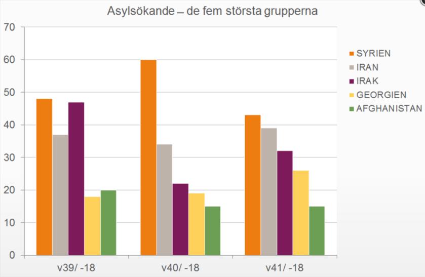 Asyl_2